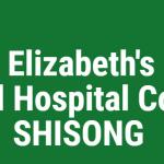 logo shisong